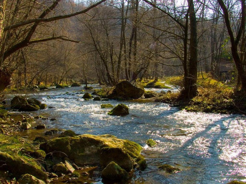 Резултат слика за reka gradac valjevo musicarenje
